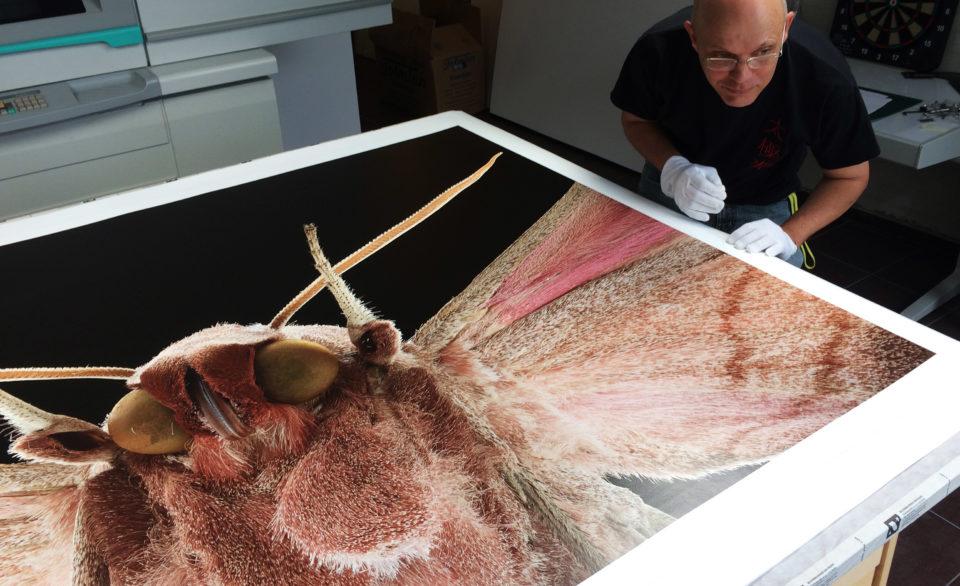 Bernhard Schurian printing @ p: photography unlimited e.V.